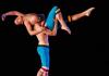 Chamber Dance Company