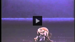 YouTube link to Chamber Dance Company: Selection from Louis Falco's